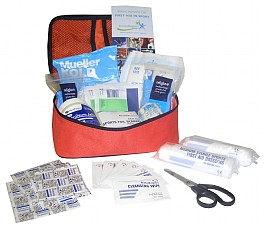 Sports first aid kit and team bag